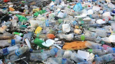 Photo of Сжигать, переработать или закопать? Куда деть этот пластик?