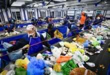 Photo of Эксперты предложили создать в России пункты компостирования отходов