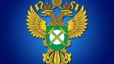 Photo of ФАС России представила Проект постановления Правительства Российской Федерации о бирже для лома черных и цветных металлов