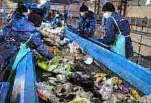Photo of Несгораемый остаток: можно ли обойтись без мусоросжигательных заводов